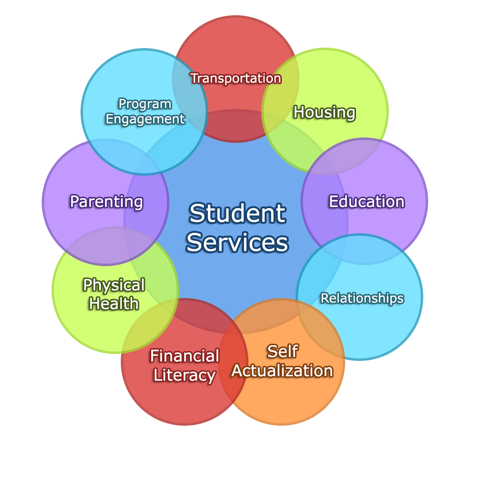 student services and student success Student services that are effectively targeted and delivered in a timely fashion  can do much to help students.